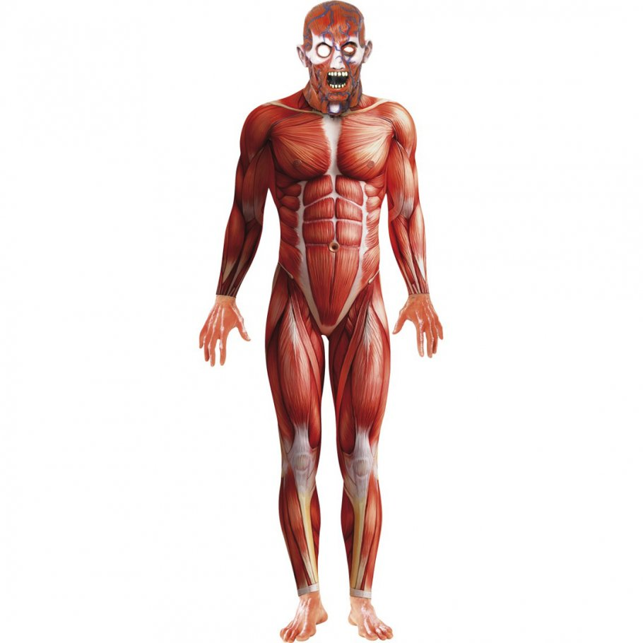 Anatomie Morphsuit rot L 52/54 Second Skin Morphsuits Zweite Haut ...